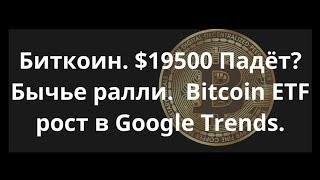 Биткоин. $19500 Падёт? Бычье ралли.  Bitcoin ETF рост в Google Trends.Курс бикоина