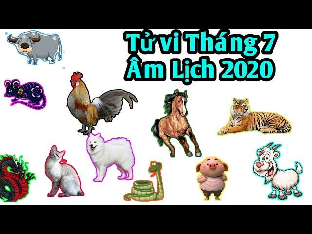 TỬ VI THÁNG 7 ÂM LỊCH NĂM 2020 CỦA 12 CON GIÁP