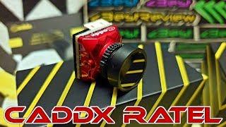 ✔ FPV Камера Caddx Ratel 1200TVL, 16:9/4:3, Pal, NTSC. Неплохо для Фристайла!