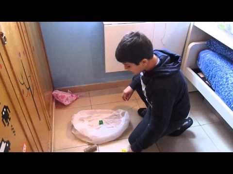 Corteccia di pioppo tremulo da parassiti per bambini