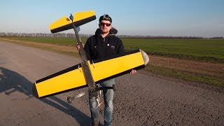 A homemade plane - started building 20 years ago - will it fly ???