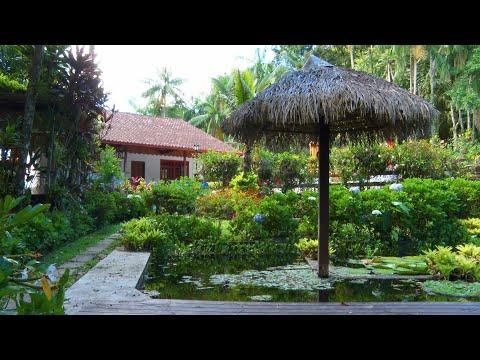 Propriedade em Lumiar é reconhecida pelo Inea como Reserva Particular do Patrimônio Natural
