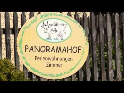 ein Tag am Panoramahof