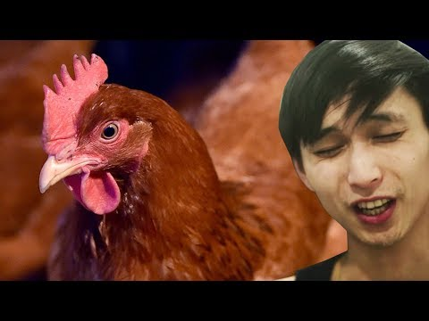 EXPENSIVE CHICKEN (SingSing Dota 2 Highlights #1031)