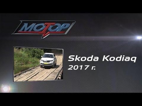Skoda  Kodiaq Паркетник класса J - тест-драйв 5