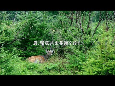 「動物たちの証言」 ~ 環境共生学類