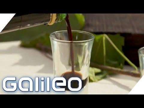 Der Weg des Balsamicos | Galileo Lunch Break