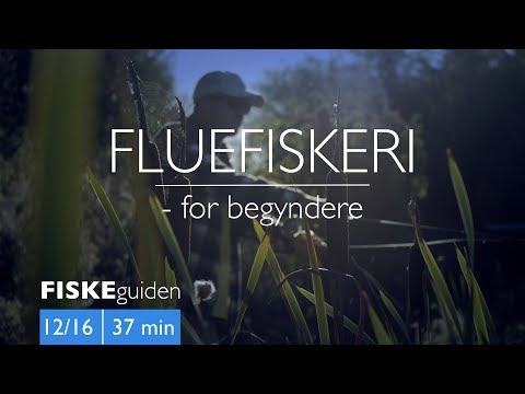 Fluefiskeri for begyndere med Gordon P. Henriksen
