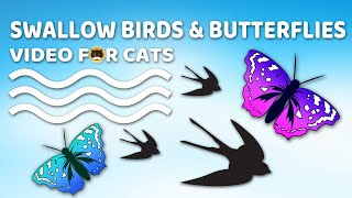 CAT GAMES - Swallow Birds and Butterflies. Video for Cats.