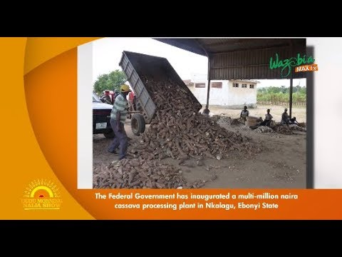 THE FEDERAL GOVERNMENT HAS INAUGRATED A MULTI MILLION NAIRA CASSAVA PROCEESING PLANT IN ENUGU