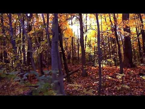 Thom Yorke - Suspirium  - Movie  Version
