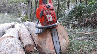 Zetor 7745 with winch Krpan 5 Si
