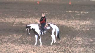 Class 3 Horsemanship