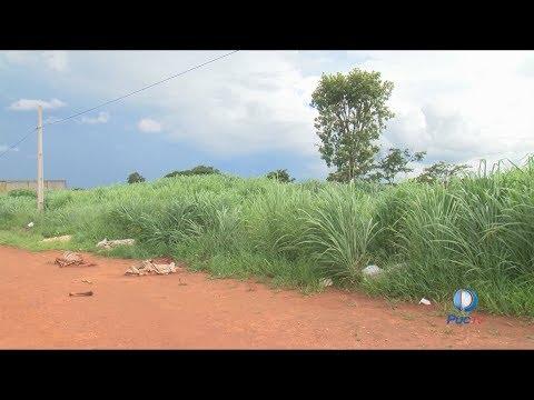 Veja a situação de um bairro em Aparecida de Goiânia que parece estar abandonado