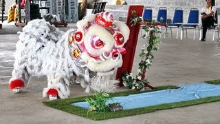 preview picture of video 'Lion Dance Video 2013 淡江源林龙狮体育会 傳統舞獅比賽'