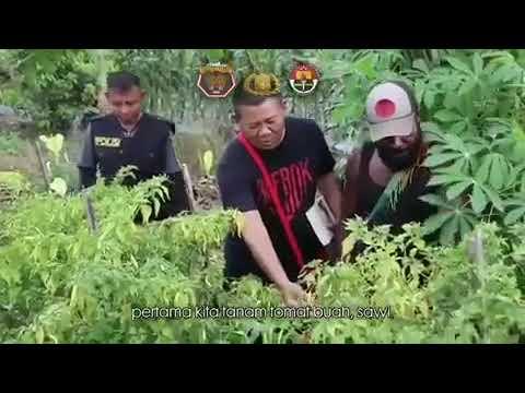 Kunjungan Komisioner Komisi Kepolisian Nasional (Kompolnas) Irjen Pol (Pur) Yonce Mende, M.Hum ke Spot Pertanian Binmas Noken di Kab. Mimika