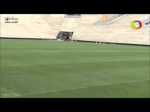 Gramado da Arena Corinthians já está concluído