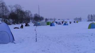 Отчеты о рыбалке в подмосковье на зимнюю