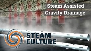 Steam Assisted Gravity Drainage - Steam Culture