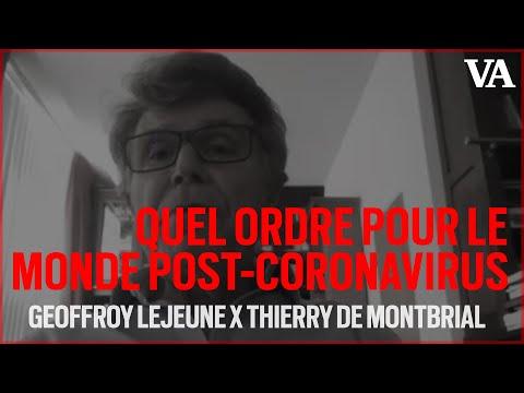 """[Vidéo] Thierry de Montbrial : """"Les démocraties libérales n'ont pas brillé sur le plan de l'efficacité"""""""