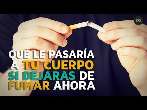 Qué Ocurre Si Dejas De Fumar Ahora Mismo