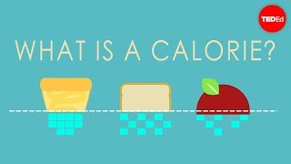 What is a calorie? – Emma Bryce