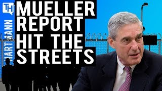 Mueller Report : Time To Protest (w/ Zac Petkanas)