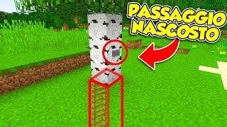Minecraft ITA - IL MIGLIOR PASSAGGIO SEGRETO!!