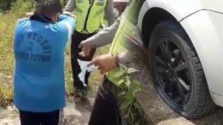 Kesal Ditilang, Bocah SMP Berani Sobek Surat Tilang Dan Gembosi Ban Mobil Polisi