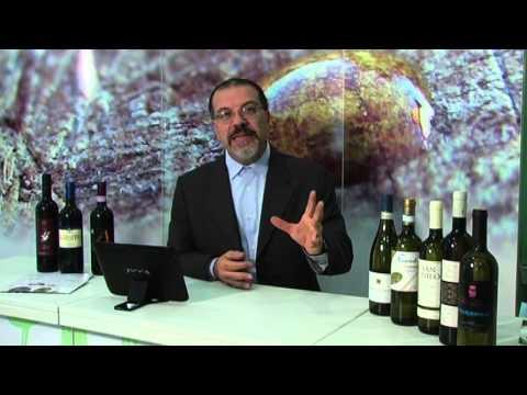 La codificazione da alcolismo la regione di Rjazan