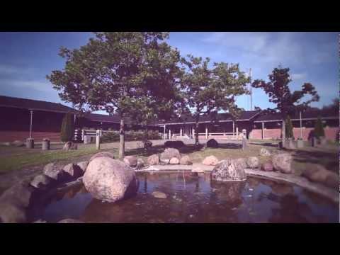 Vakantie in Vakantiepark Danland Gilleleje in Gilleleje in Denemarken