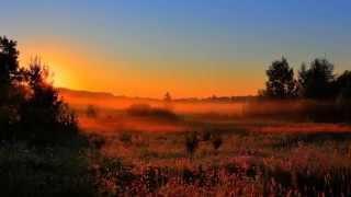 John Lee Hooker - Early one morning