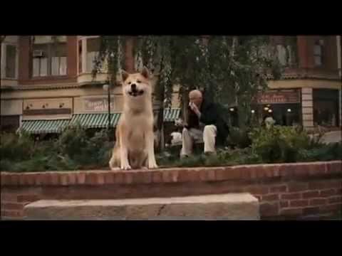 Watch this 100 times and you ll cry again! A very very sad story whith a dog