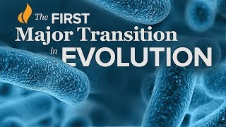 The First Major Transition in Evolution | Single-Celled Life—Prokaryotes to Eukaryotes