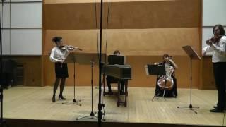 Antonio Vivaldi -  La Folia in D Minor RV63