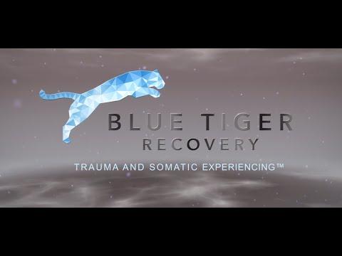 Trauma & Somatic Experiencing