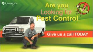 preview picture of video 'Affordable 24 Hour Ants Control Barrie 866-755-8173 Quality Pest Control Service'