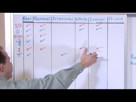 Lesson 1 - Real Numbers (Pre-Algebra Tutor)