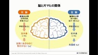脳と片マヒの関係って?