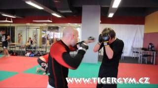 preview picture of video 'MMA tréning Tiger Gym Praha Řepy'