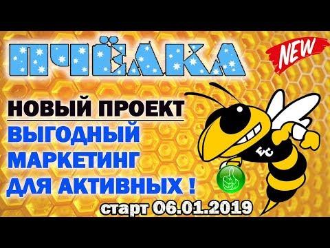 ПЧЕЛКА (psota.ru) Новый проект с выгодным маркетингом для тех кто умеет приглашать