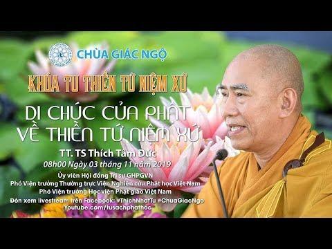 Lời Phật di chúc về thiền Tứ Niệm Xứ - TT. Thích Tâm Đức