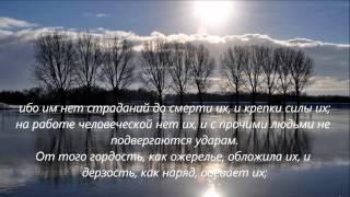 Псалом 71-72_Боже мой! избавь меня из руки нечестивого