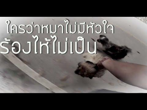 ยาหม่องโรคสะเก็ดเงินไทย