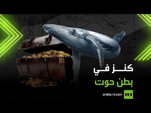 العرب اليوم - شاهد: العثور على كنز في بطن حوت