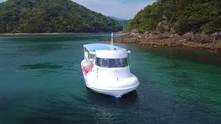 水中観光船ブルーマリン徳島県海陽町マリンジャム