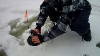 Рыбалка в череповце на рыбинском водохранилище