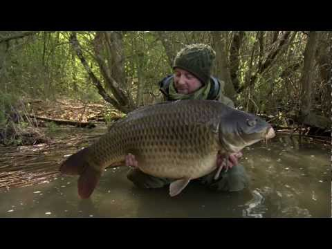 d36e16a35b3 Carp Fishing Accessories videos and product reviews