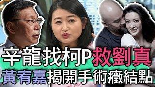【精華版】辛龍找柯P救劉真?黃宥嘉揭開手術癥結點
