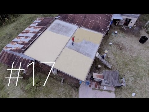#17 - Huila, Colombia. Coffee farming from above!